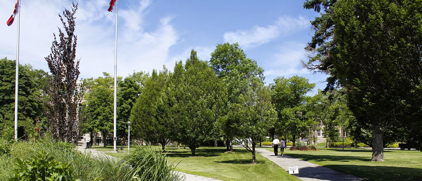 Trees and grassy areas on campus