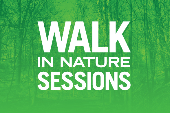Walk in nature sessions