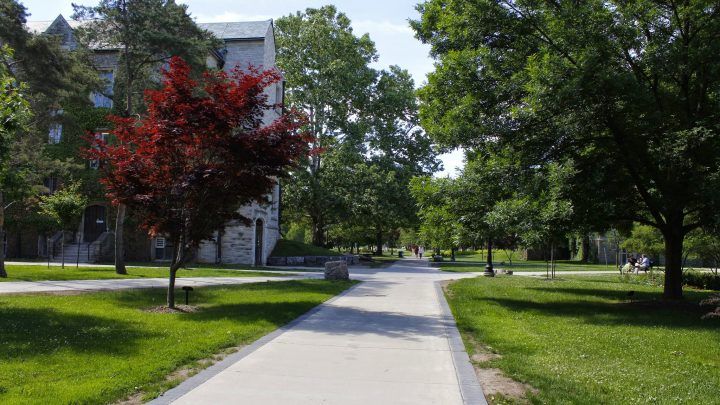 A path winds through McMaster campus. Trees and grass are on either side.