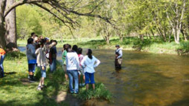 Students stand at the water's edge of a creek as another student speaks while standing in the creek.